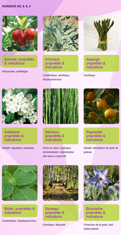 herbier-a-a-j